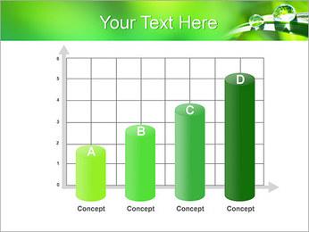 Gouttes d'eau sur l'herbe Modèles des présentations  PowerPoint - Diapositives 21
