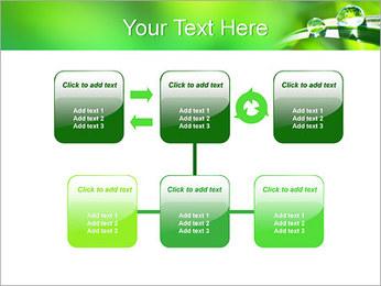 Gouttes d'eau sur l'herbe Modèles des présentations  PowerPoint - Diapositives 23
