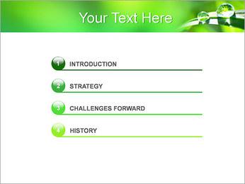 Gouttes d'eau sur l'herbe Modèles des présentations  PowerPoint - Diapositives 3