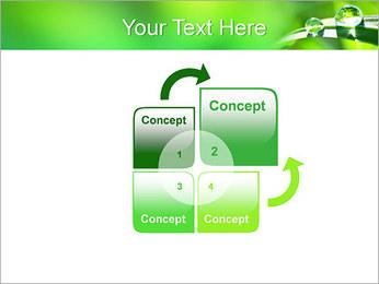 Gouttes d'eau sur l'herbe Modèles des présentations  PowerPoint - Diapositives 5