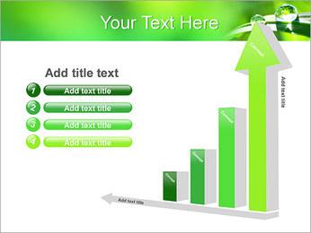 Gouttes d'eau sur l'herbe Modèles des présentations  PowerPoint - Diapositives 6
