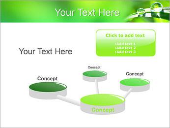 Gouttes d'eau sur l'herbe Modèles des présentations  PowerPoint - Diapositives 9