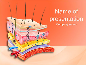 Skin Anatomy PowerPoint Template