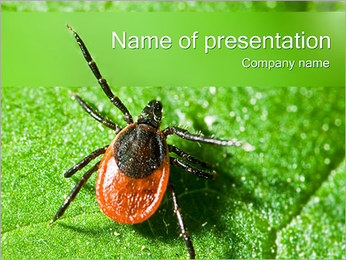 Tick PowerPoint Template