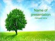 Green Tree on Field PowerPoint Templates