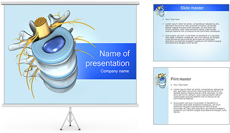 anatomy ppt templates free download - spine anatomy powerpoint template backgrounds id
