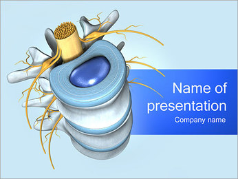 Spine Anatomy PowerPoint Template