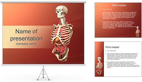 Human Anatomy Model PowerPoint Template
