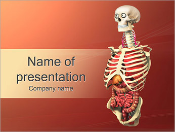 Human Anatomy Model PowerPoint Templates - Slide 1