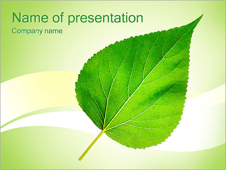 Green leaf powerpoint template backgrounds id 0000002499 green leaf powerpoint templates toneelgroepblik Image collections