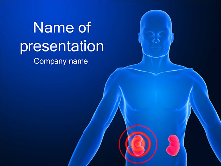 Kidney organ powerpoint template backgrounds id 0000002528 kidney organ powerpoint template toneelgroepblik Image collections