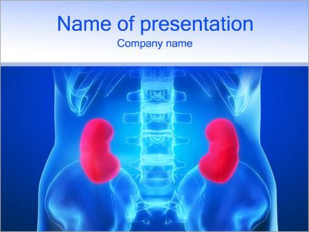 Kidneys dieses powerpoint template backgrounds google slides id kidneys dieses powerpoint template toneelgroepblik Gallery