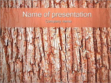Écorce de l'arbre Modèles des présentations  PowerPoint