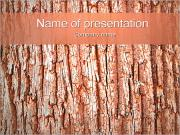 Bark Of The Tree PowerPoint Templates