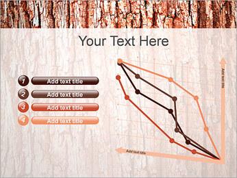 Écorce de l'arbre Modèles des présentations  PowerPoint - Diapositives 13