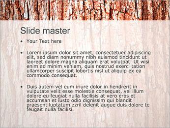 Écorce de l'arbre Modèles des présentations  PowerPoint - Diapositives 2