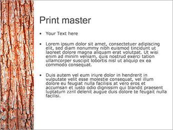 Écorce de l'arbre Modèles des présentations  PowerPoint - Diapositives 24