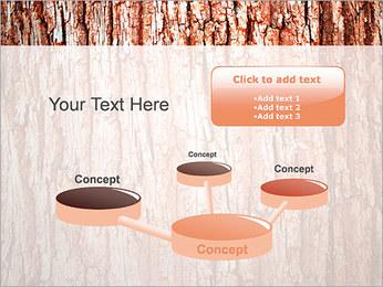 Écorce de l'arbre Modèles des présentations  PowerPoint - Diapositives 9