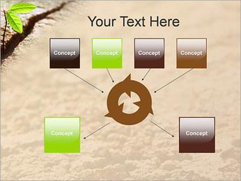 Plante verte Modèles des présentations  PowerPoint - Diapositives 10