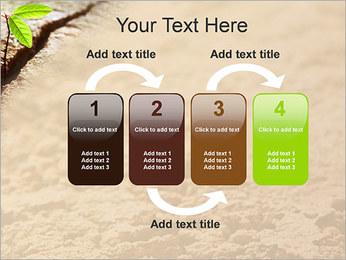 Plante verte Modèles des présentations  PowerPoint - Diapositives 11
