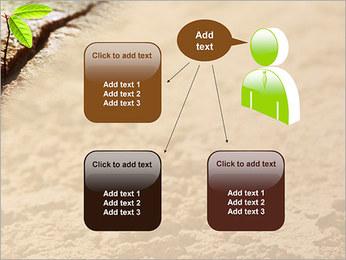 Plante verte Modèles des présentations  PowerPoint - Diapositives 12