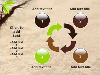 Plante verte Modèles des présentations  PowerPoint - Diapositives 14