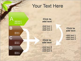 Plante verte Modèles des présentations  PowerPoint - Diapositives 16