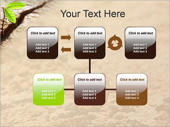 Plante verte Modèles des présentations  PowerPoint - Diapositives 23