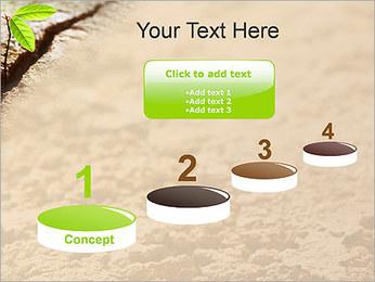 Plante verte Modèles des présentations  PowerPoint - Diapositives 7