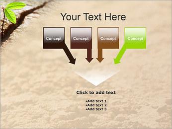Plante verte Modèles des présentations  PowerPoint - Diapositives 8
