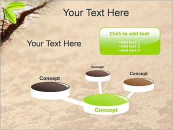 Plante verte Modèles des présentations  PowerPoint - Diapositives 9