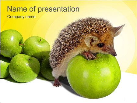 hedgehog with apple powerpoint template & backgrounds id, Modern powerpoint