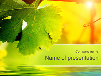 Autumn Leaves PowerPoint Template - Slide 1
