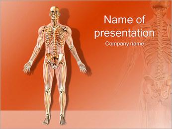 Humans Skeleton PowerPoint Template