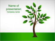 New Tree PowerPoint Templates