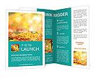 0000020017 Brochure Templates