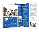 0000020203 Brochure Templates