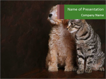 Adorable Puppy and Kitten PowerPoint Template