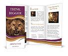 0000020244 Brochure Templates