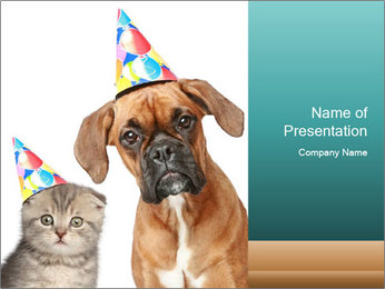 Small Boxer and Grey Kitten PowerPoint Template