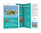 0000020290 Brochure Templates
