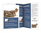 0000020320 Brochure Templates