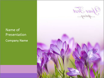 Postcard with Spring Flowers PowerPoint Template
