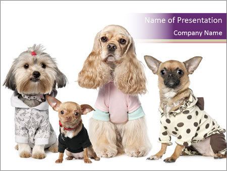 Girlish small dogs powerpoint template backgrounds google slides girlish small dogs powerpoint template toneelgroepblik