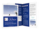 0000020616 Brochure Templates