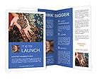 0000020717 Brochure Templates