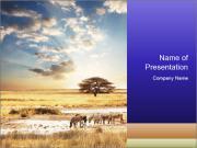 Wildlife of Animals PowerPoint Templates
