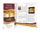 0000021009 Brochure Templates
