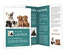 0000021097 Brochure Templates