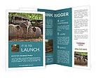 0000021252 Brochure Templates